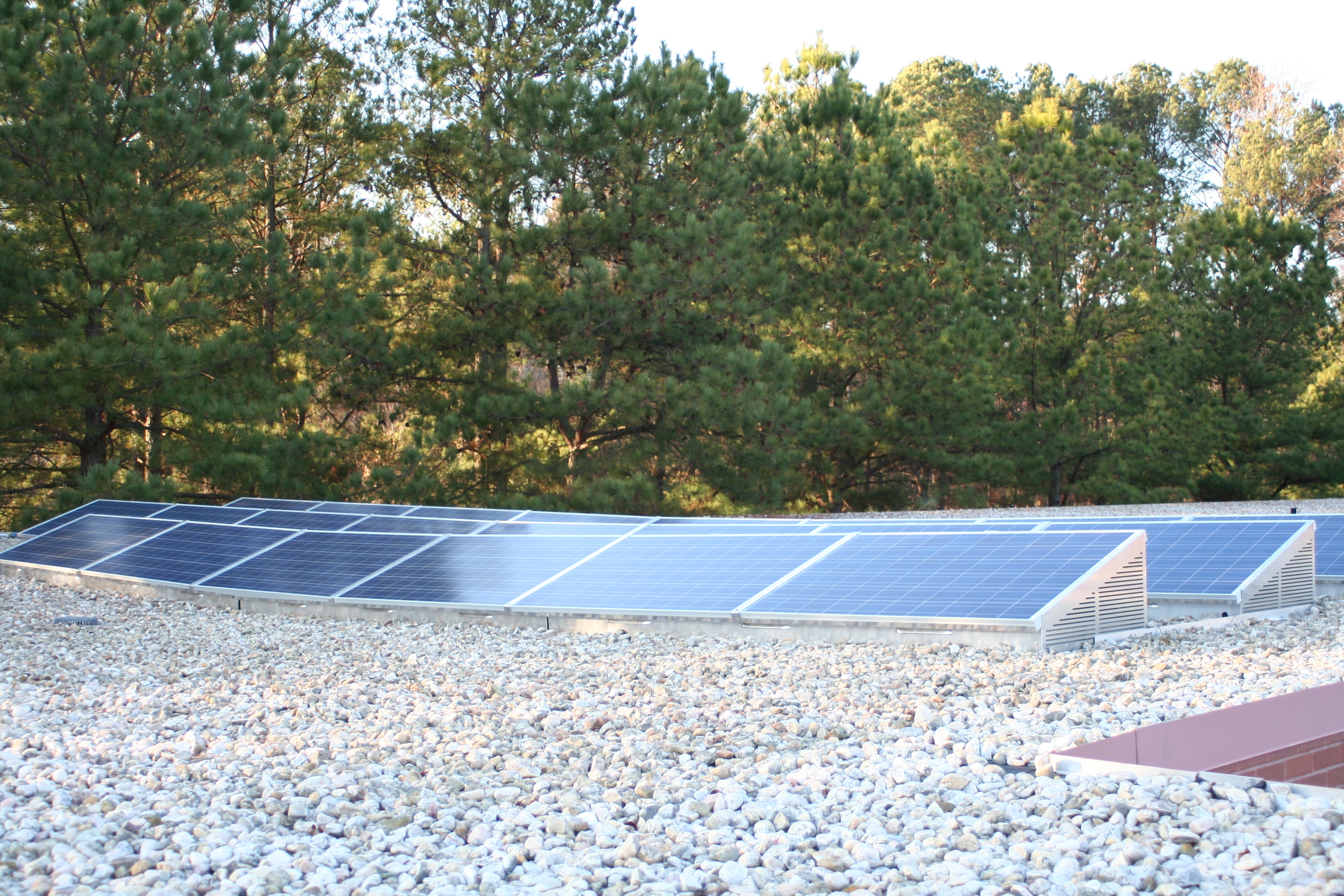 Effect Energy Rates Yes Solar Yes Solar Solutions